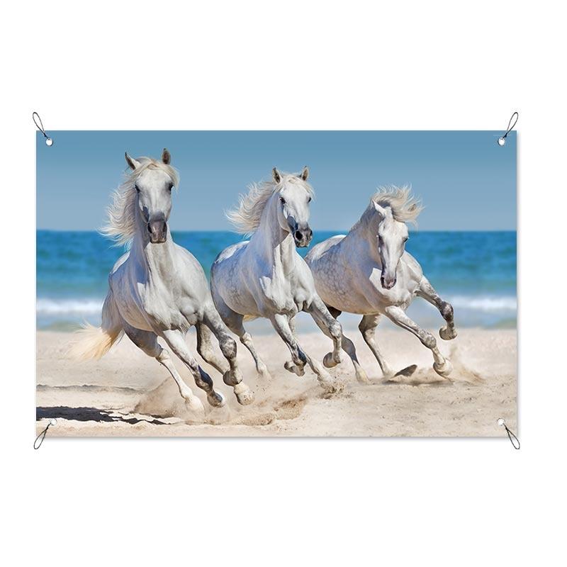 Tuinposter Paarden op het strand