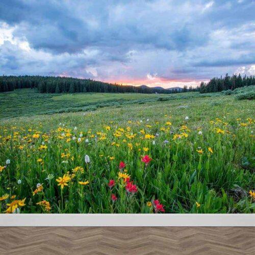 Fotobehang bergen in de verte