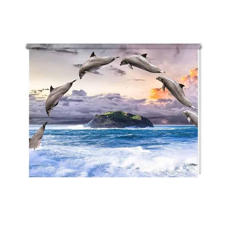 Rolgordijn Dolfijnen
