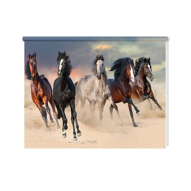 Rolgordijn Paarden in galop