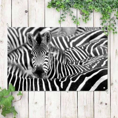 Tuinposter Zebra
