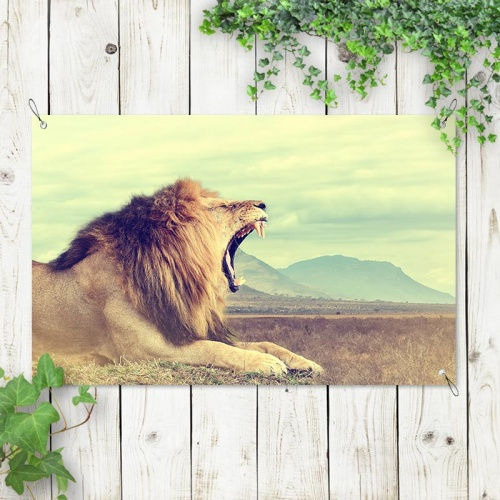 Tuinposter Gapende leeuw