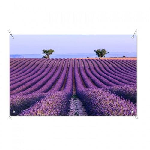 Tuinposter Lavendelveld