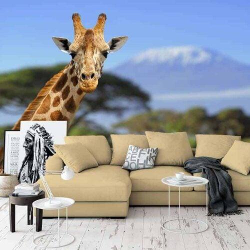 Fotobehang Giraffe voor Kilimanjaro