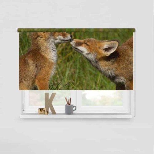 Rolgordijn Spelende vosjes