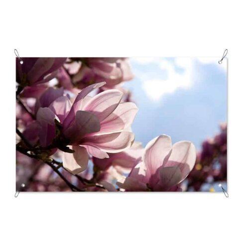 tuinposter Magnolia
