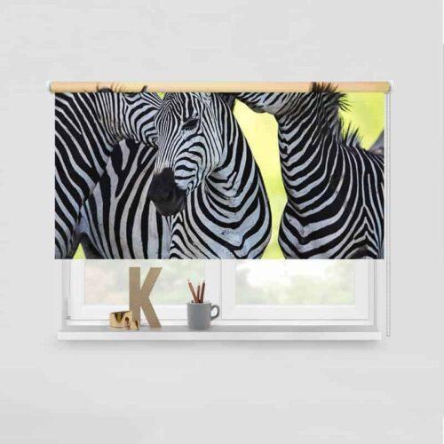 Rolgordijn drie knuffelende zebra's