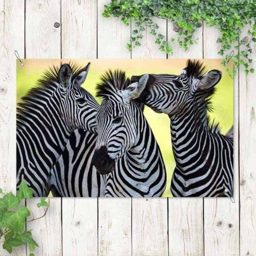 Tuinposter Drie knuffelende zebra's