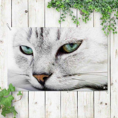Tuinposter Luie kitten