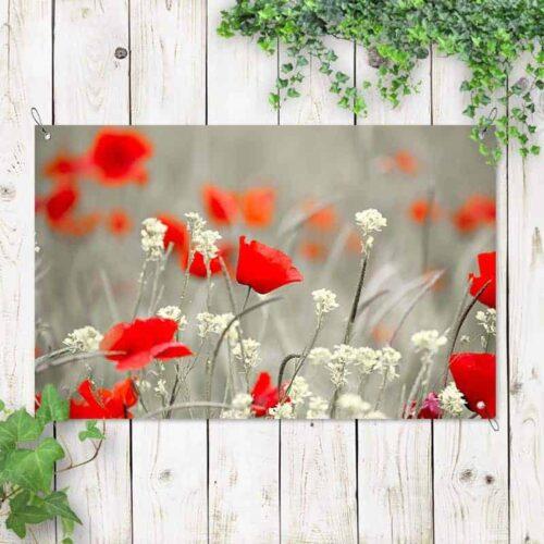 Tuinposter Papaverveld rood grijs wit