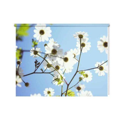 Rolgordijn Witte bloemen