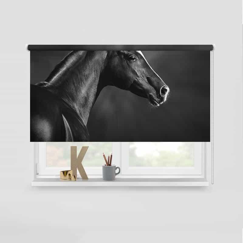 Rolgordijn Close up paard
