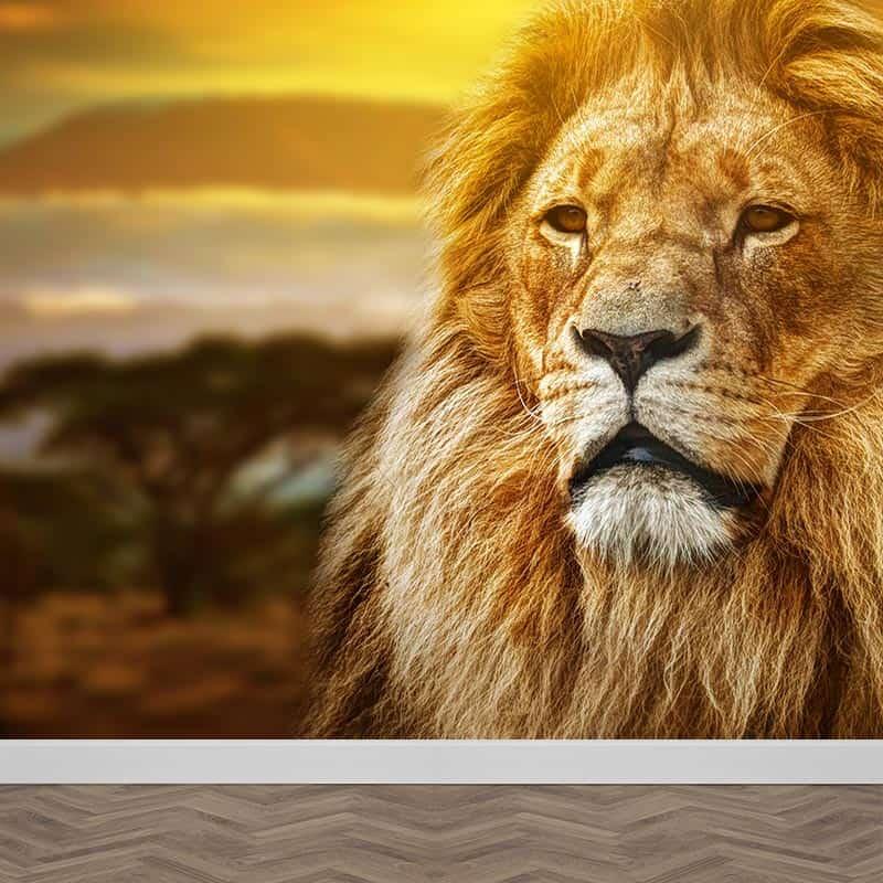 Fotobehang Mysterieuze leeuw