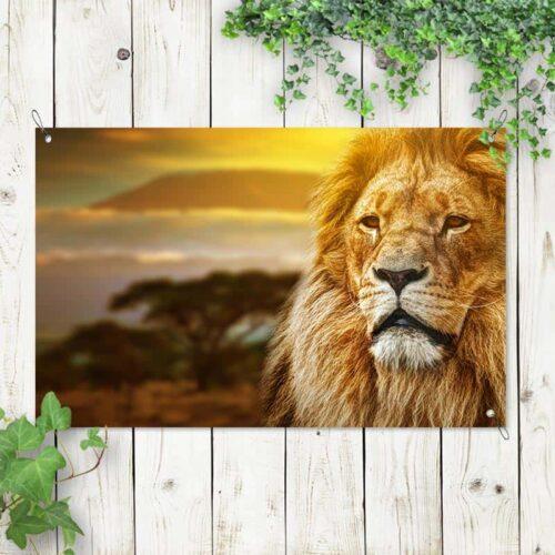 Tuinposter Mysterieuze leeuw