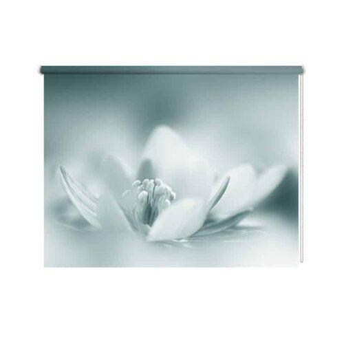 Rolgordijn Mysterieuze bloem