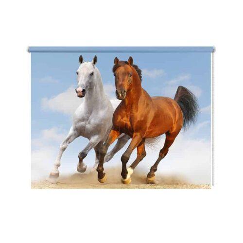 Rolgordijn Galopperend paarden duo