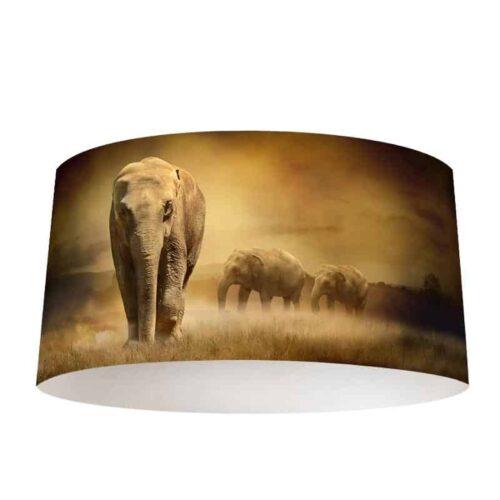 Lampenkap Olifanten in de Namibwoestijn