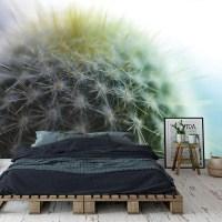 fotobehang cactus close up
