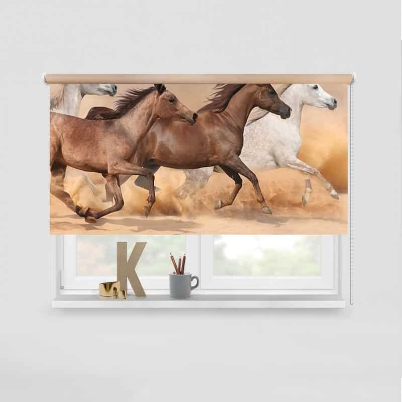 Rolgordijn Wilde paarden