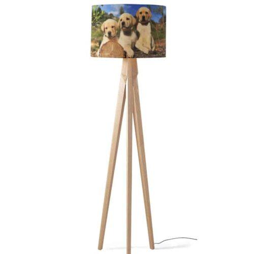 Lampenkap Labrador pups