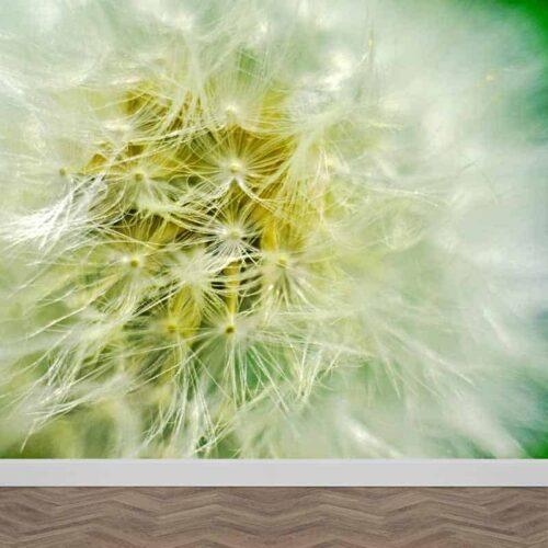 Fotobehang Dandelion groen