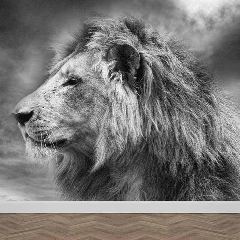 Fotobehang Jonge leeuw