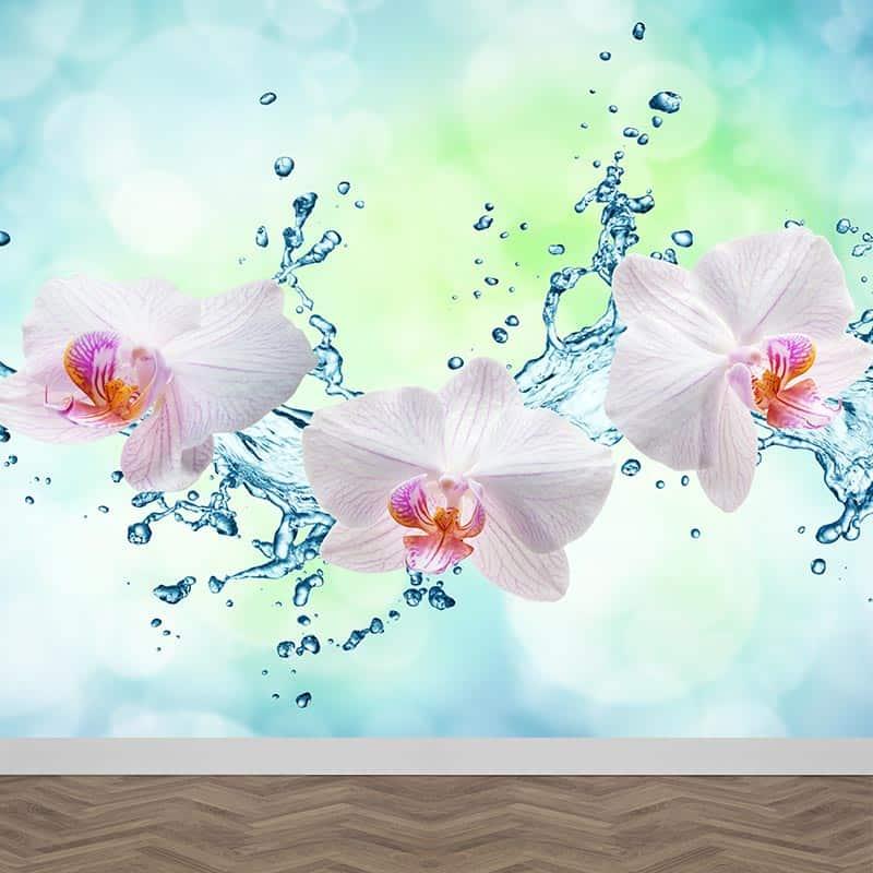 Fotobehang Orchidee splash