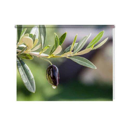 Rolgordijn olijf in het groen