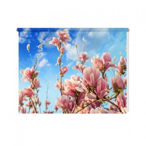 Rolgordijn Magnolia in bloei