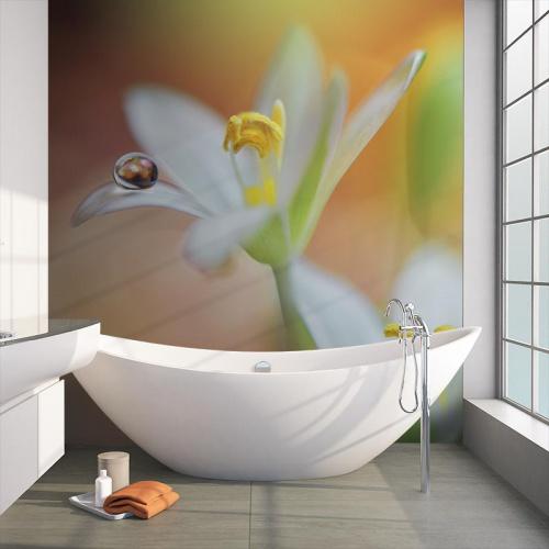 Fotobehang Witte lelie met waterdruppel