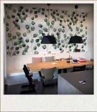 voorbeeld fotobehang eucalyptus blaadjes