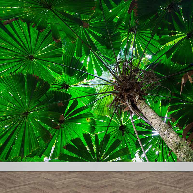 Fotobehang Palmboom close up