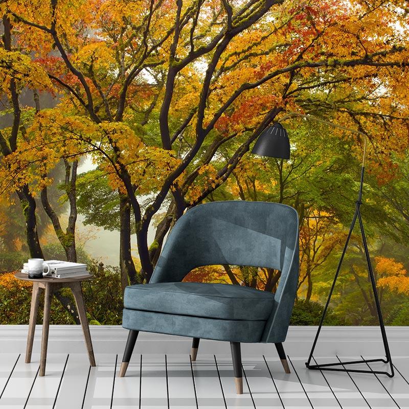 Fotobehang Esdoorn in herfstkleuren