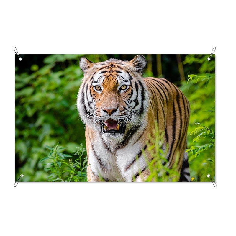 Tuinposter Pas op tijger