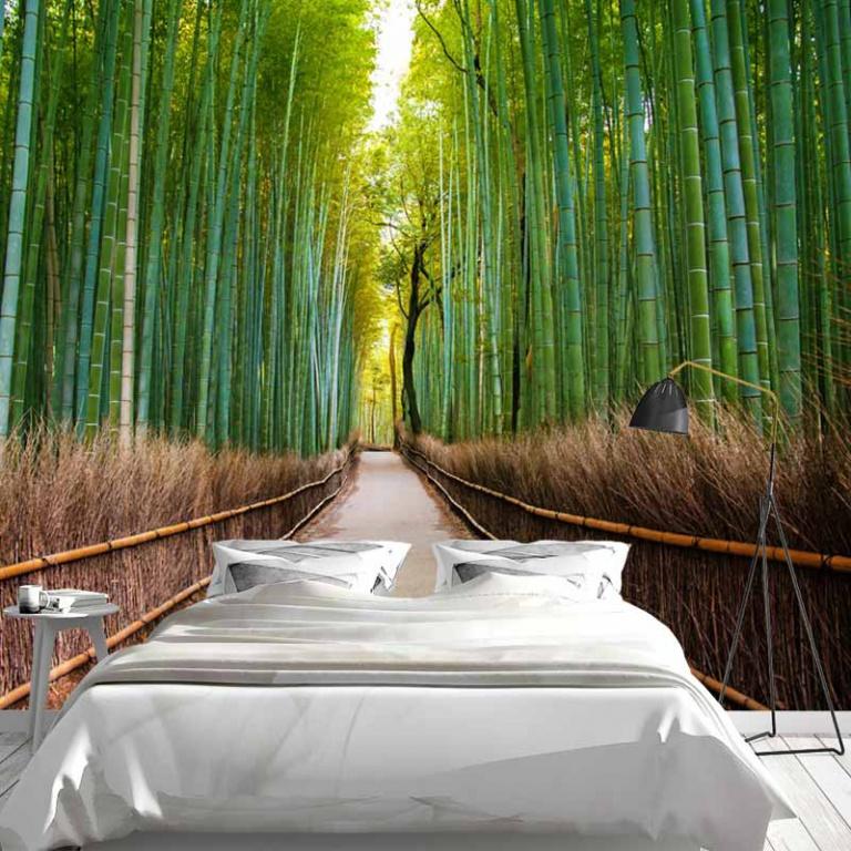 Fotobehang bamboe bos