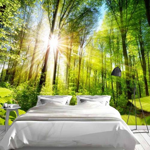 Fotobehang zonnig bos