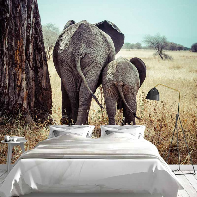 Fotobehang olifant met jong