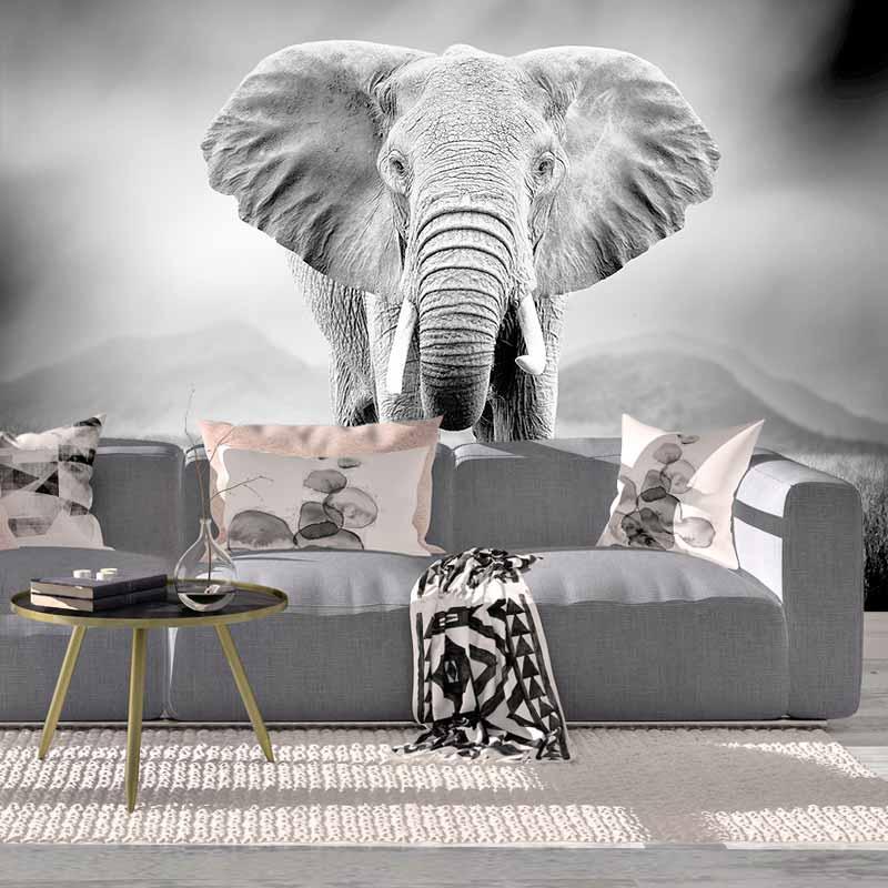 Fotobehang olifanten in zwartwit