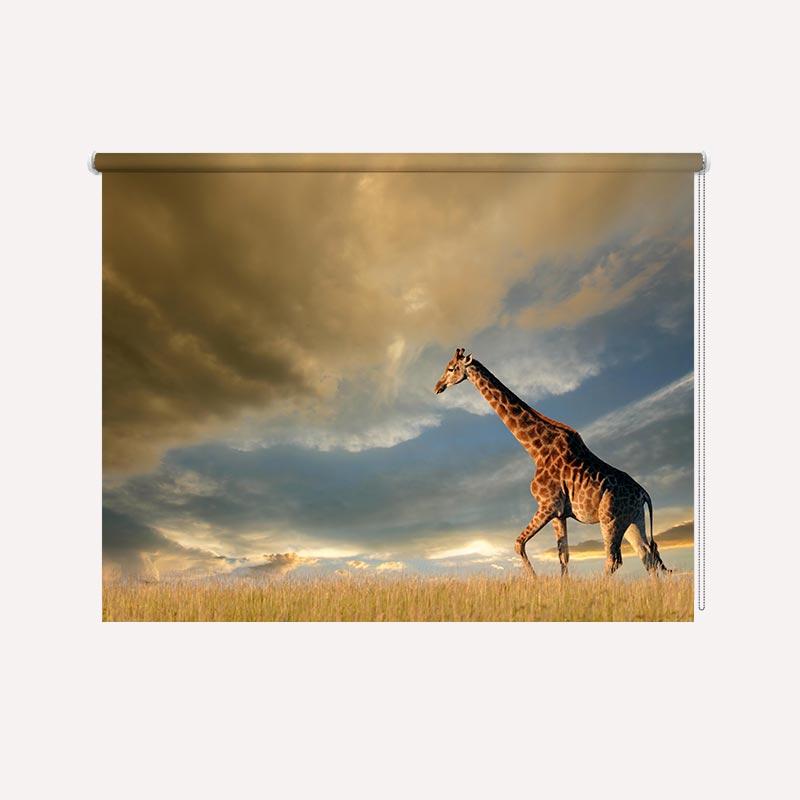 Rolgordijn Eenzame giraf