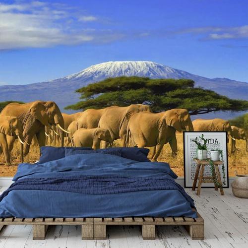 Fotobehang Olifanten bij Kilimanjaro