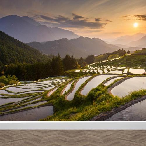 Fotobehang Aziatische rijstvelden