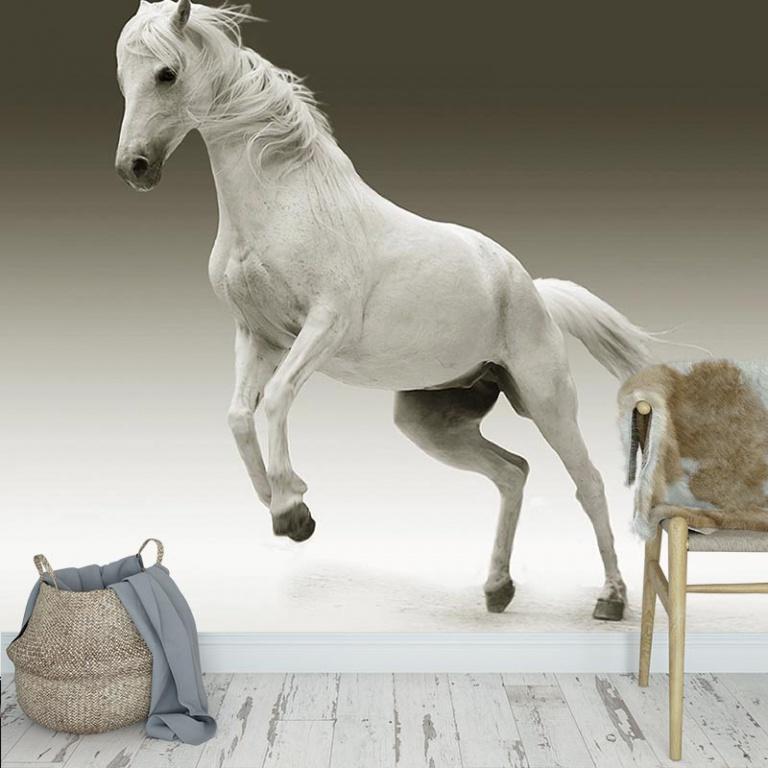 Fotobehang Steigerend paard