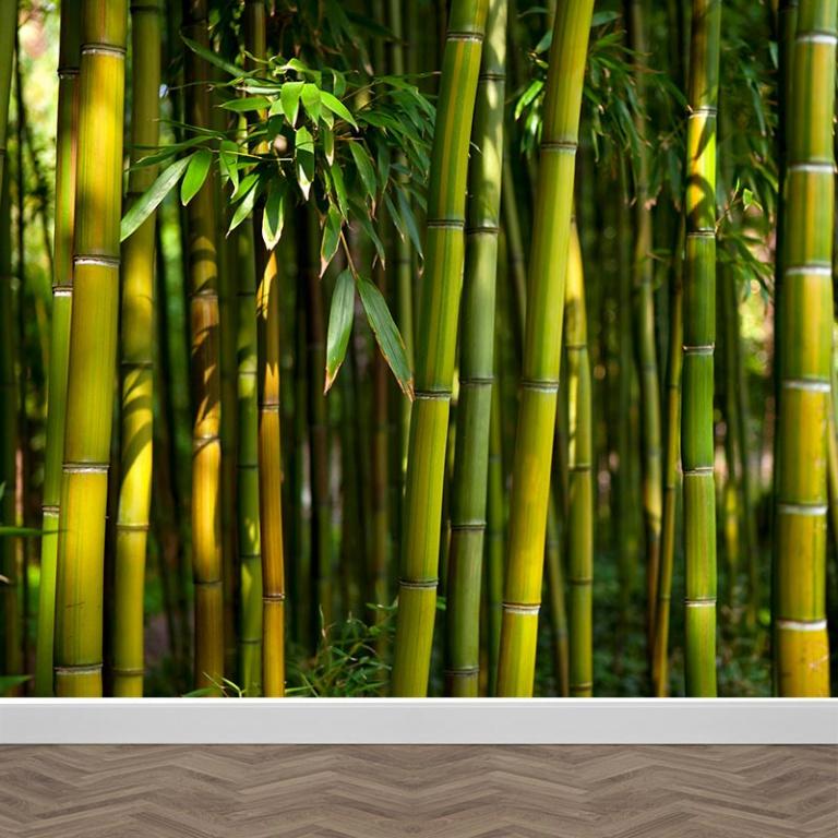 Fotobehang Tussen het bamboe