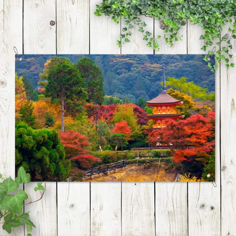 Tuinposter Wandelen in Japanse tuin
