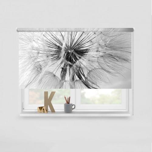 Rolgordijn Dandelion in zwartwit
