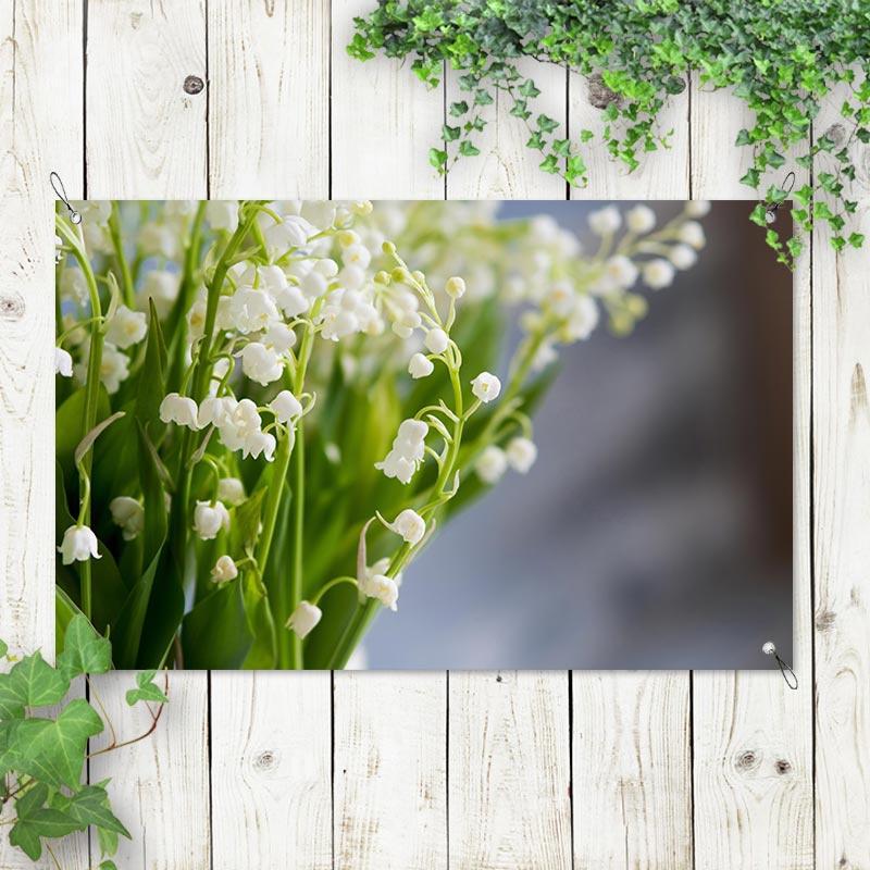 Tuinposter Lelietje van Dalen