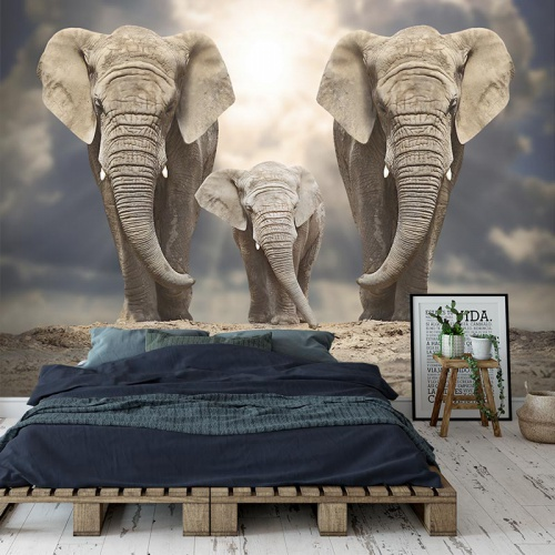 Fotobehang Olifanten familie 2