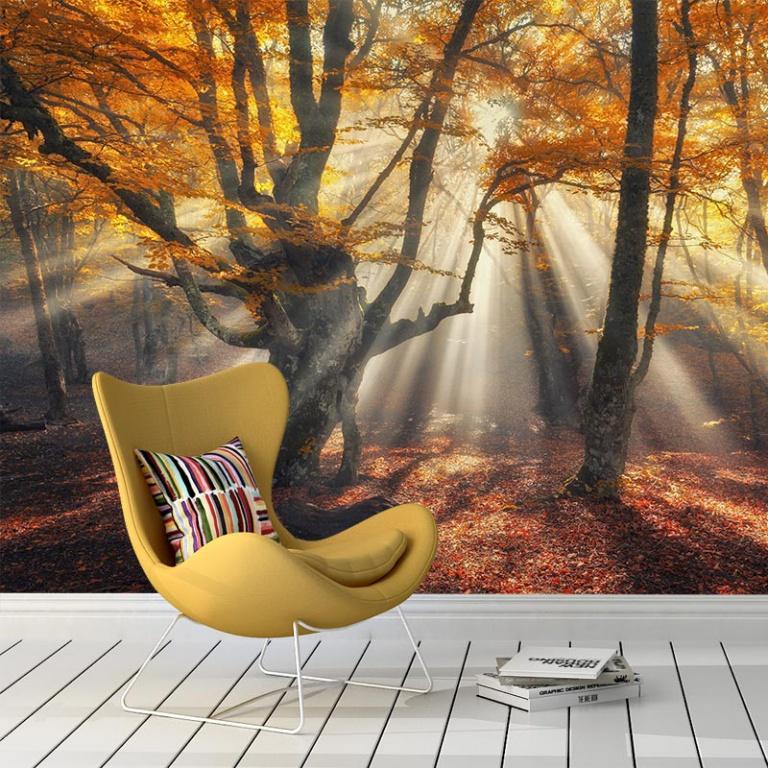 Fotobehang-Zon-in-het-herfstbos