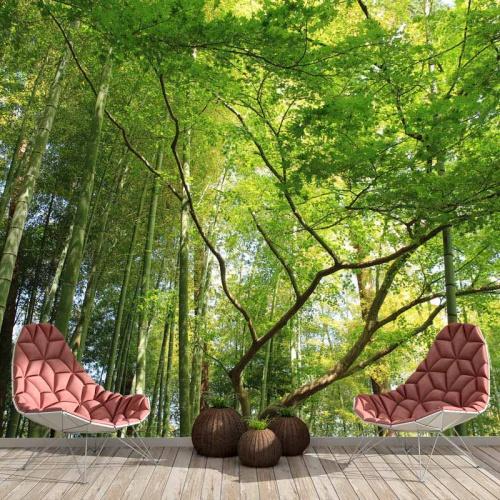 fotobehang-in-het-bamboebos