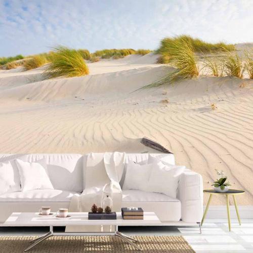 Fotobehang-Hollandse-duinen